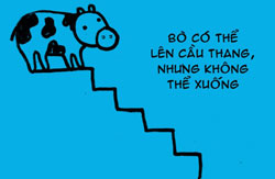 http://nhakhoa126.com/hinhanh/tin%20tuc/nha-khoa-ky-luc-bo.jpg