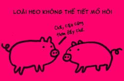http://nhakhoa126.com/hinhanh/tin%20tuc/nha-khoa-ky-luc-heo.jpg